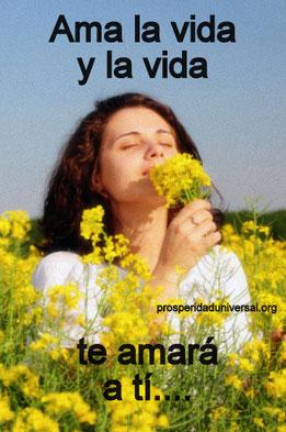 pensamiento-positivo-amala-la-vida-y-la-vida-te-amará-a-ti-prosperidad-universal