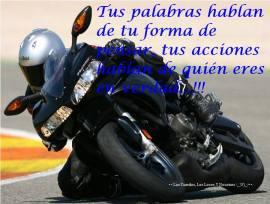 1452311_215264031978879_1063964443_n