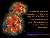 imagenes-con-pensamientos-positivos-motivadores-153-creaciones-anamar-argentina-2013