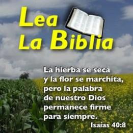 mensajes-cristianos-con-citas-biblicas-para-ti-400x400