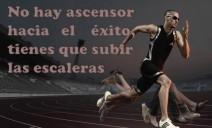 deportivas.jpg1_