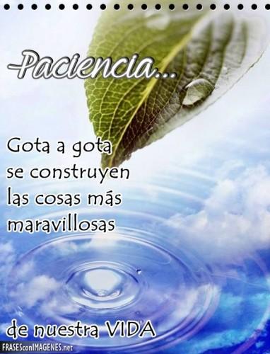 paciencia-382x500