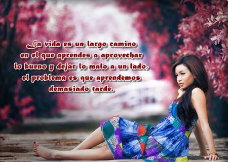 Frases-e-Imagenes-Bonitas-4-450x319